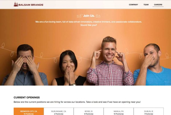 Balsam Brands career site
